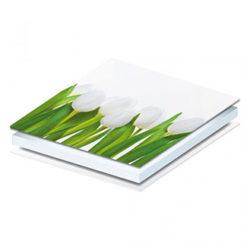 pannello-tulipani